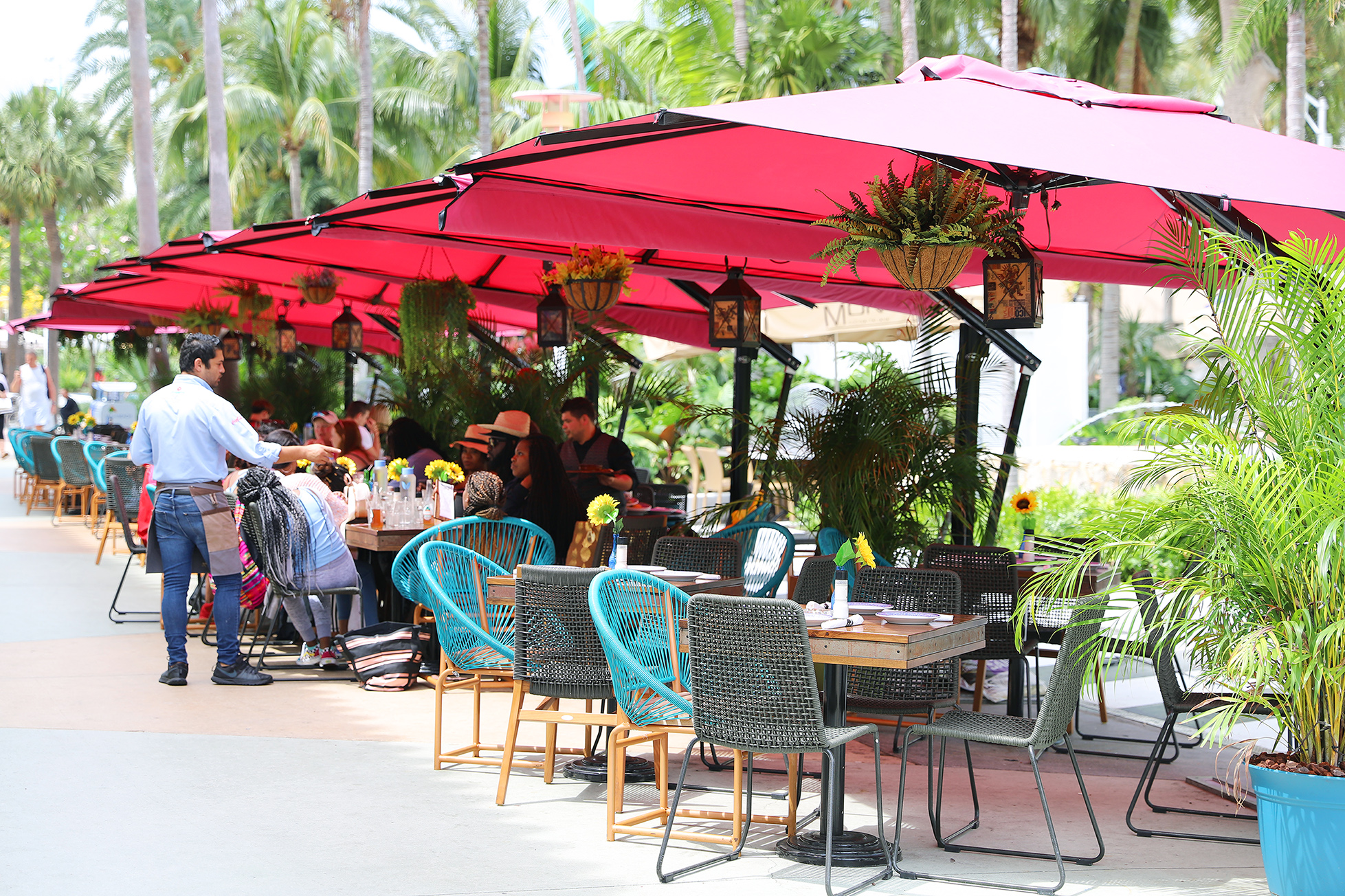 Where to Eat on Lincoln Road, Miami Beach