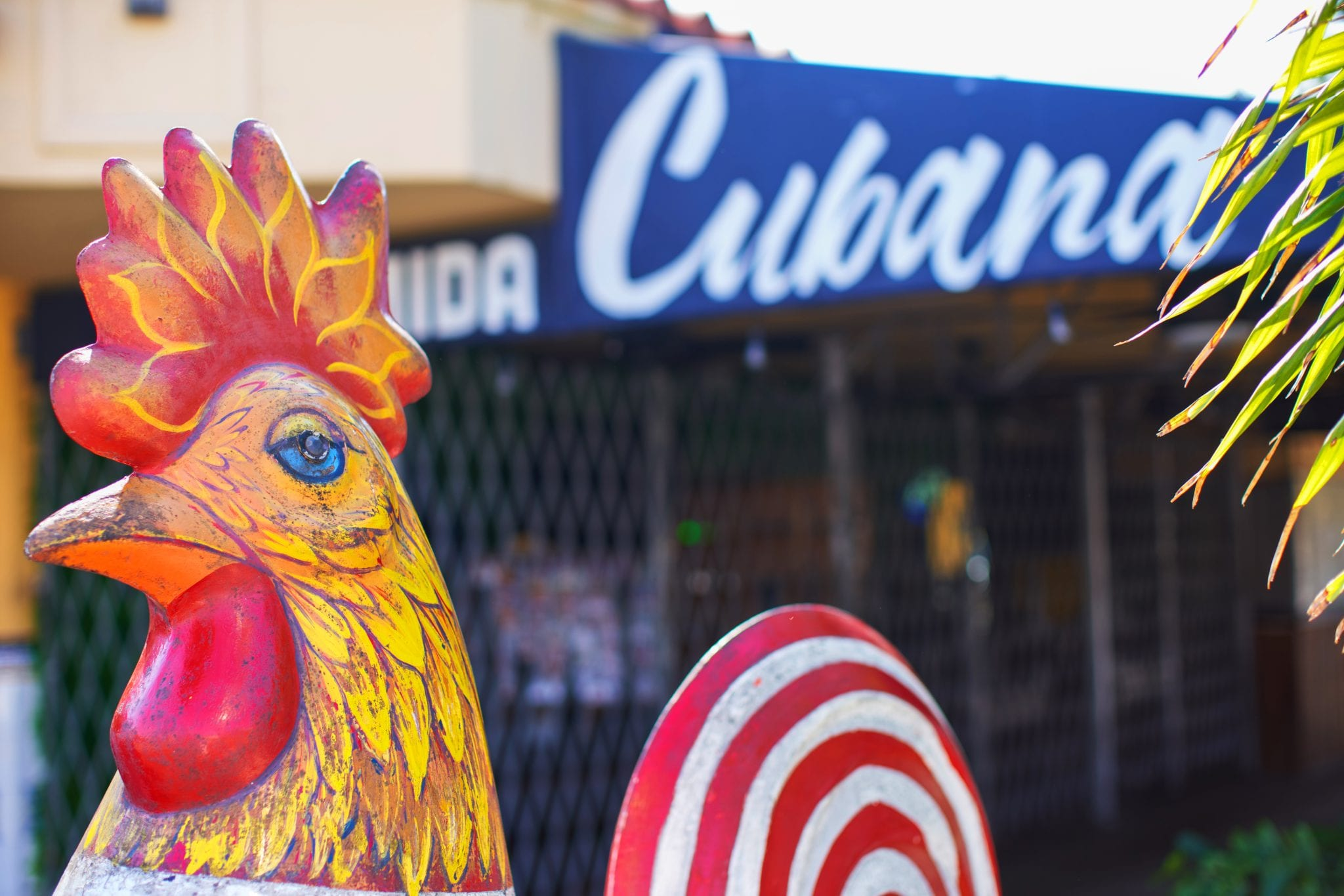 Miami's Little Havana: A Guide to Great Eats