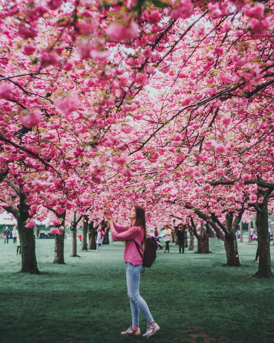 Spring Preview: The Best Spring Activities in NYC
